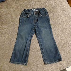 3t Bootcut Jean's